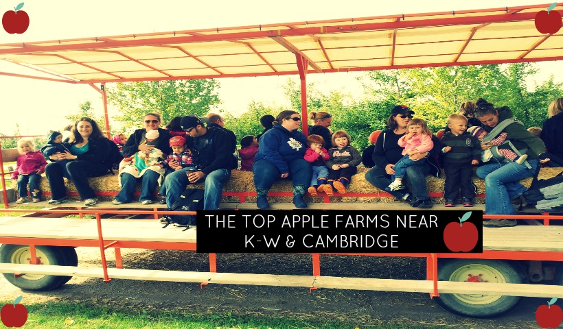 Where to find Apple Farms in Kitchener, Waterloo and Cambridge Areas